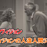 【ワンダヴィジョン】ヴィジョンのジョーク・1話目・その2【MCU】