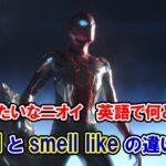 【インフィニティ・ウォー】「新車みたいなニオイ」は英語で何と言う?『smell』と『smell like』の違いは?【アベンジャーズのセリフで英語の問題】