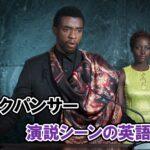 『ブラックパンサー』国王ティ・チャラの演説シーンを日本語訳【チャドウィック・ボーズマン 一周忌】