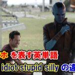 【エンドゲーム】「バカ・アホ」を表す単語『idiot/stupid/silly』の違いは?【アベンジャーズのセリフで英語の問題】